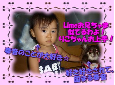 image4_20100819014856.jpg