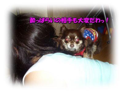 image4_20110614011444.jpg