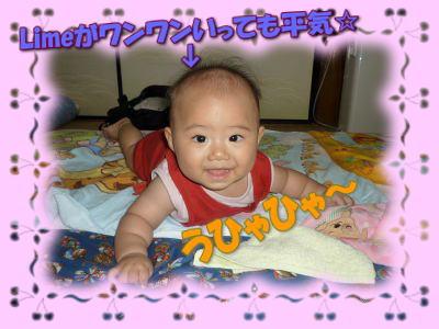 image5_20100819015142.jpg