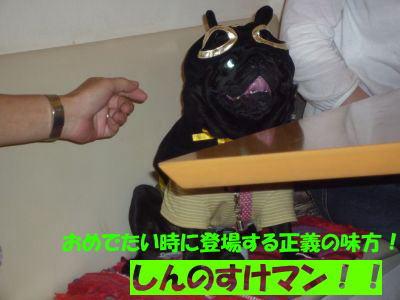 image5_20110530130830.jpg