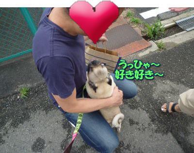 image8_20110613142000.jpg