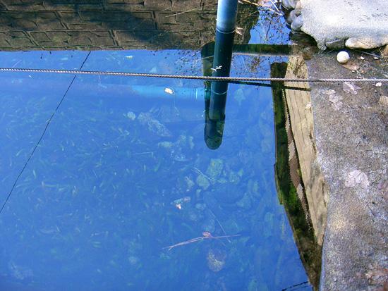 香川県丸亀市飯山町 焼飯出水
