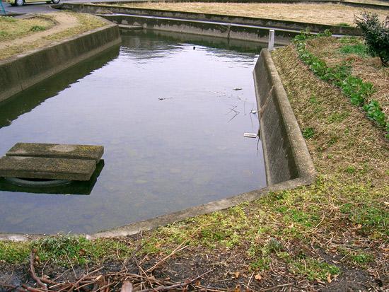 香川県仲多度郡まんのう町東高篠付近の出水