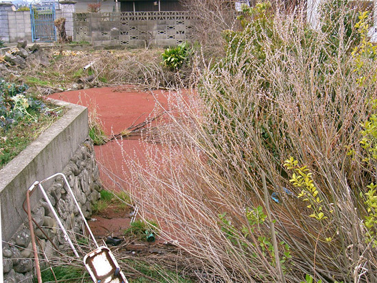 香川県仲多度郡まんのう町公文付近の出水
