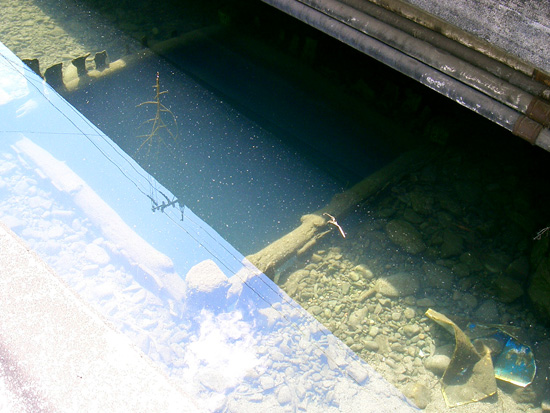香川県丸亀市飯山町湧水出水