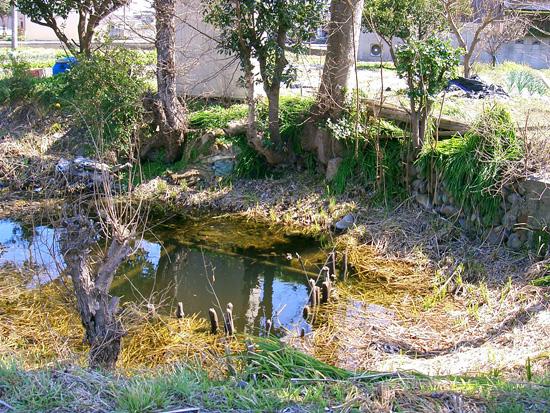 丸亀市飯山町出水・湧水