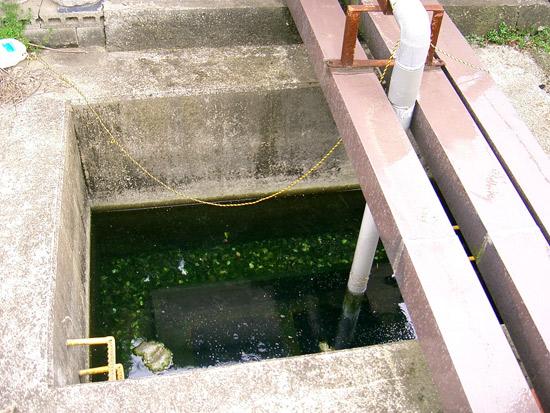 丸亀市出水湧水