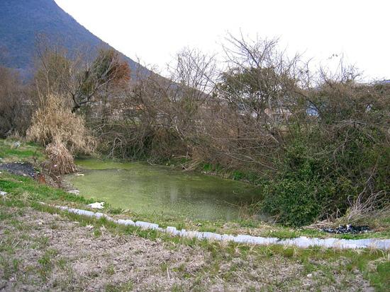 丸亀市飯山町湧水出水