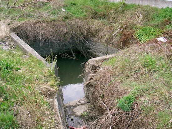 新出水 飯山町出水・湧水