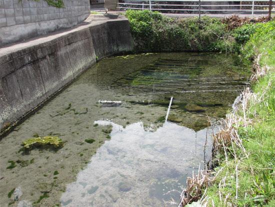 琴平町苗田周辺の出水・湧水