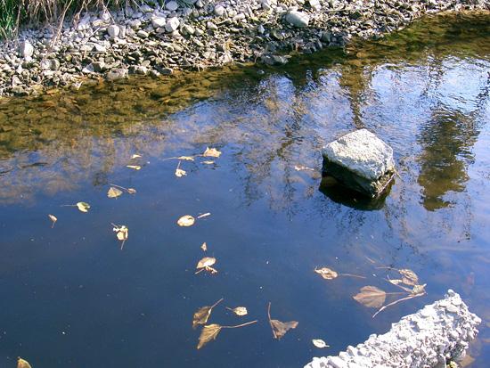 香川県丸亀市飯山町 森目出水