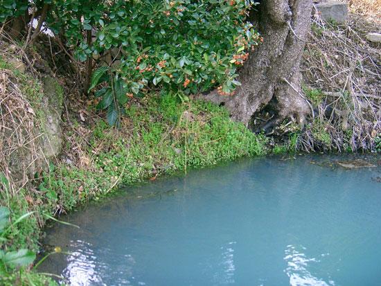 飯山町飯野山すそ野にある湧水