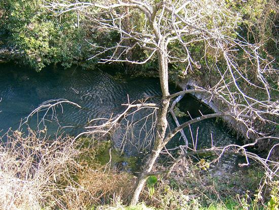 香川県丸亀市川西町湧水 出水