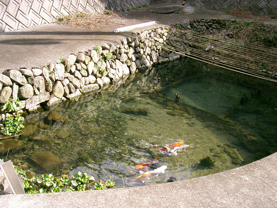 香川県丸亀市垂水町湧水 出水