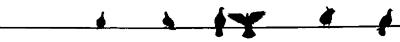 line13-01-03.jpg