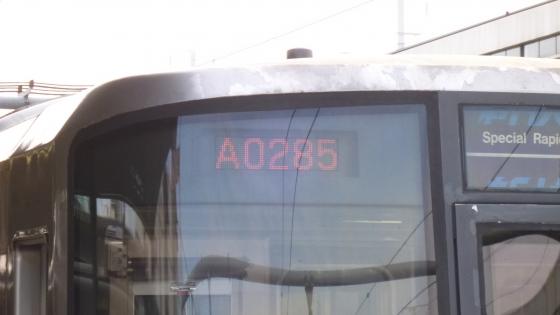 P1010431.jpg