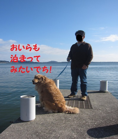 IMG_2464.jpg