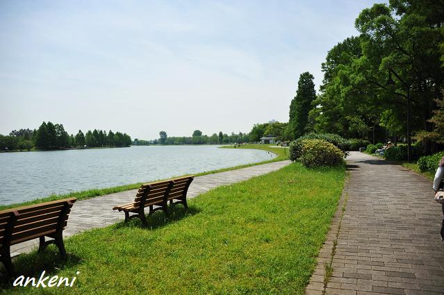 261  水元公園