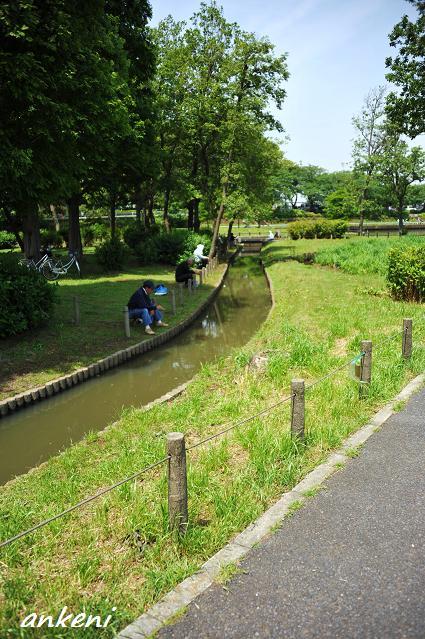 279  水元公園