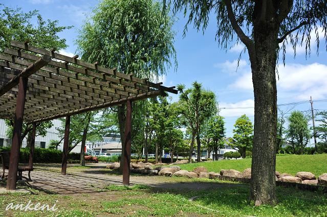 155  公園