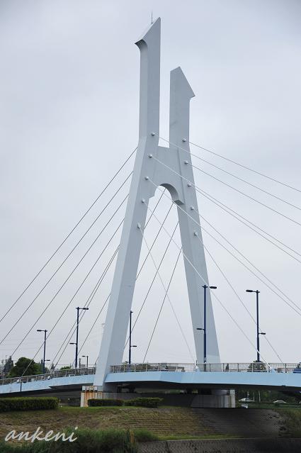 024  橋