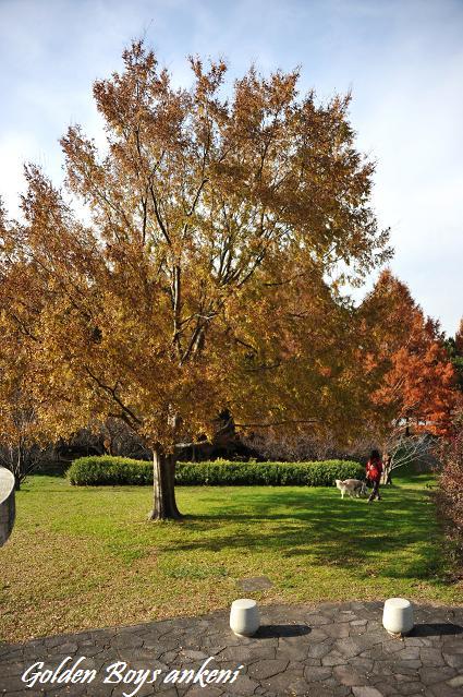 253  三郷公園