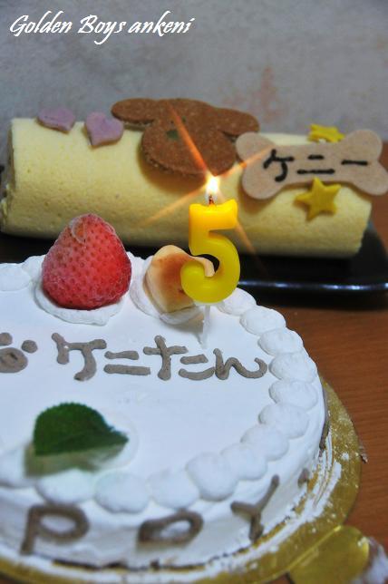219  ケーキ
