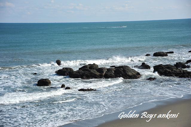 313  大洗海岸