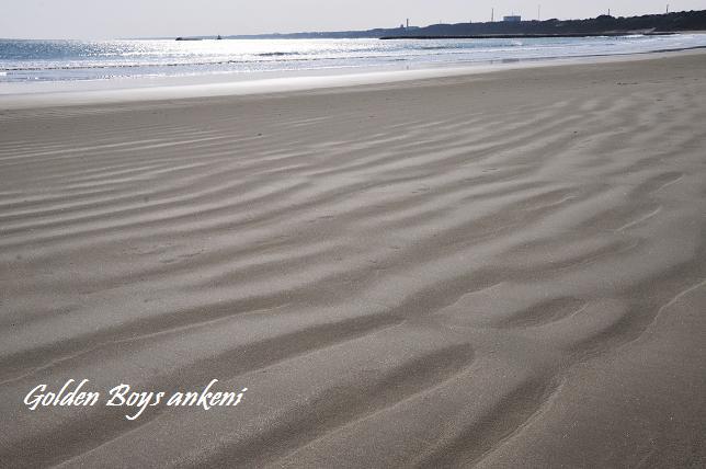 026 砂浜