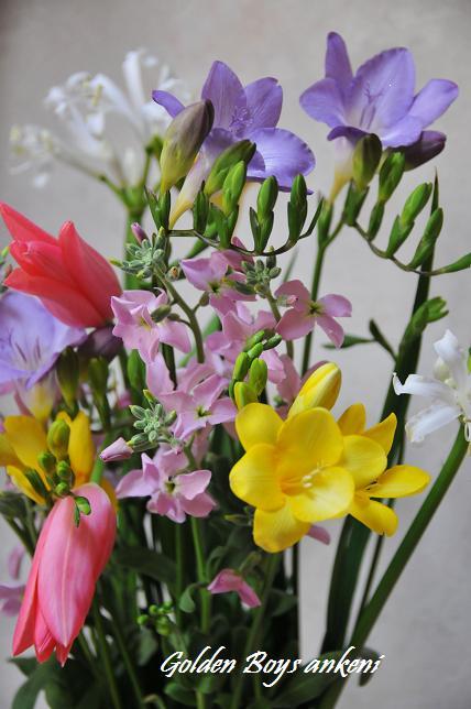 141  花