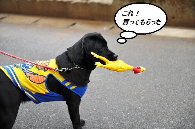 030  あさひちゃん