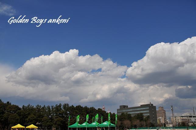 2011  千葉ポ