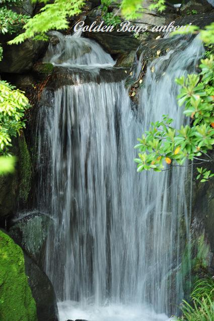 062  滝