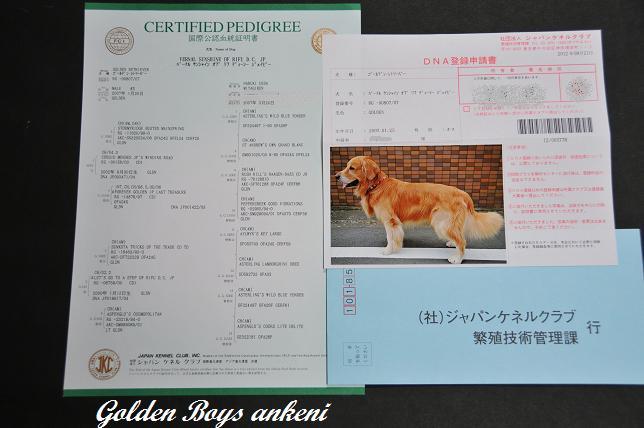 114  DNA登録申請