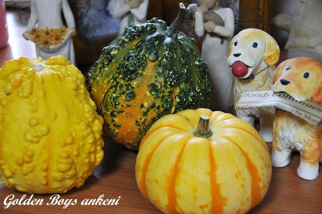004  かぼちゃ