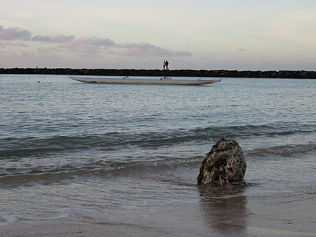 49 2014 ハワイ砂浜3