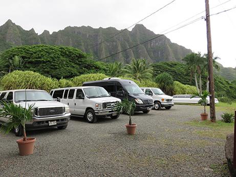 72 2014 ハワイ観光18 マカダミア