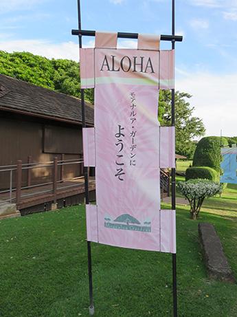 94 2014 ハワイ観光40