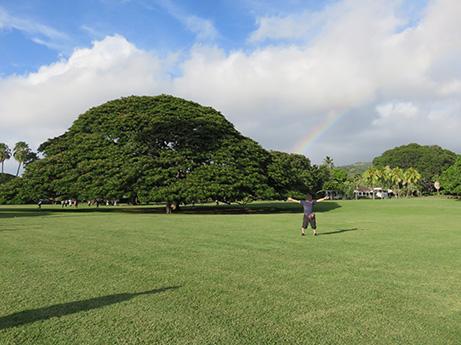 95 2014 ハワイ観光41