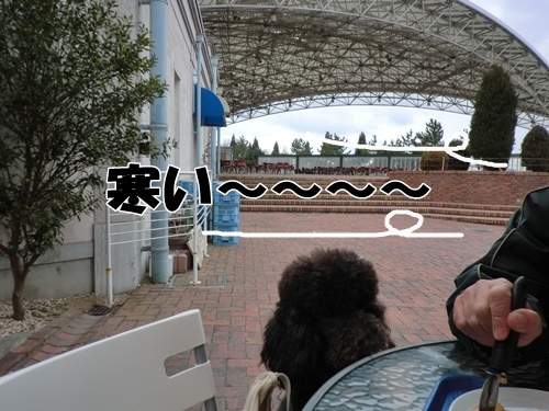 201201296359.jpg