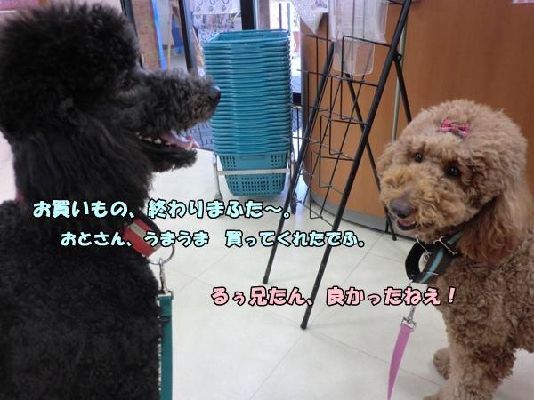 201203157771.jpg