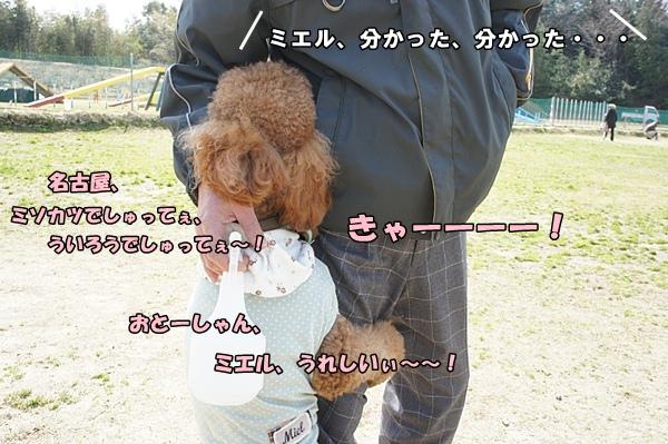 201203201191.jpg