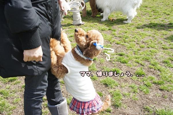 201203201221.jpg