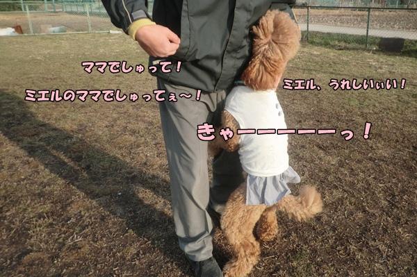 201203207086.jpg