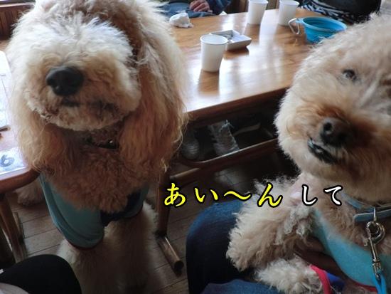 201203207896.jpg