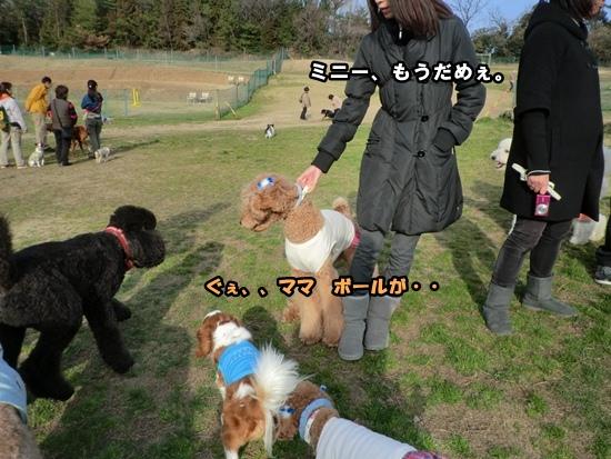 201203207959.jpg
