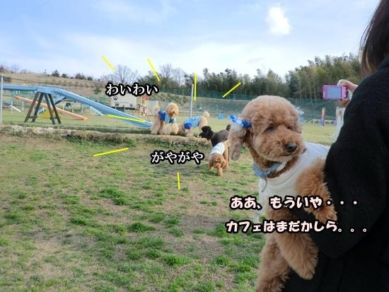 201203207972a.jpg