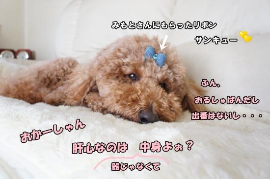 201203291501r.jpg