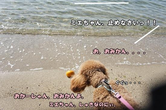 201203291552.jpg