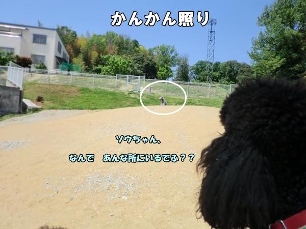 201205058271.jpg